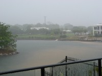 View from my office during a steamy tropical storm